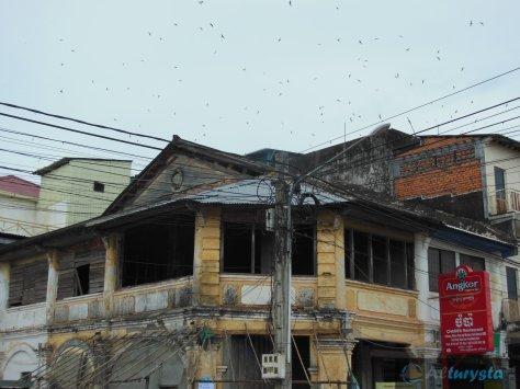 Alturysta_Kampot
